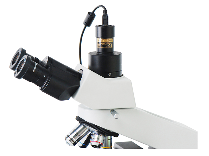 trinocular microscope with camera
