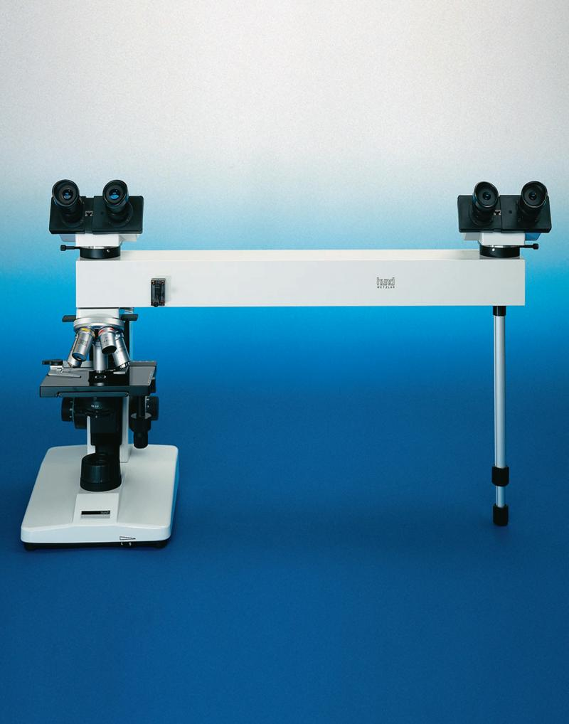 Hund Discussion bridge Microscope