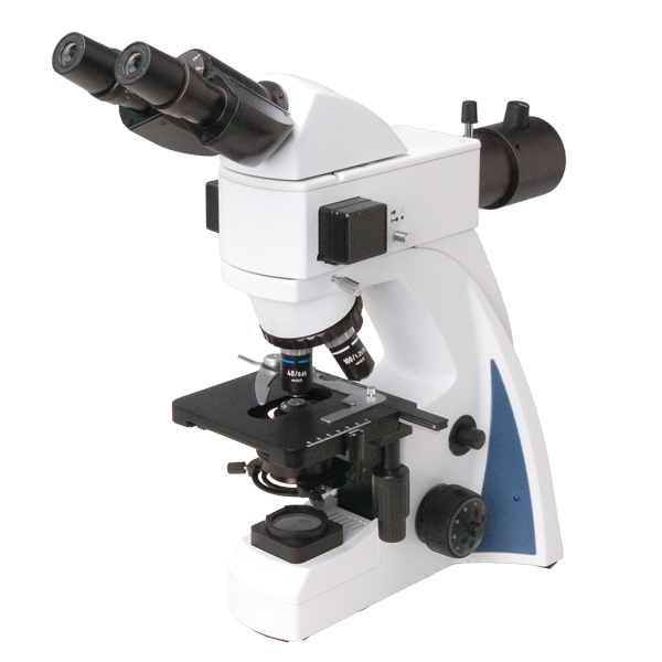S 300 LED FLUORESCENCE MICROSCOPE
