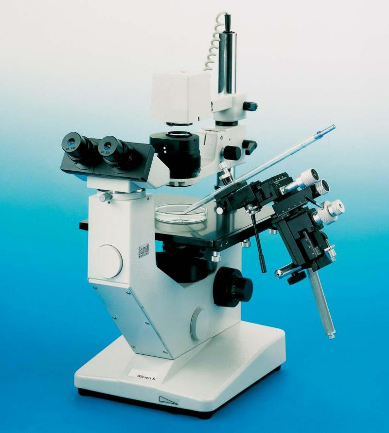 wilovert tissue culture microscope